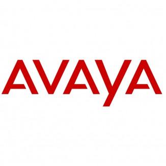 Кабель питания Avaya C5 PWR CORD EU/RUSSIA