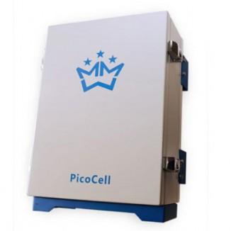 Репитер EGSM/GSM/3G PicoCell E900/1800/2000 SXP